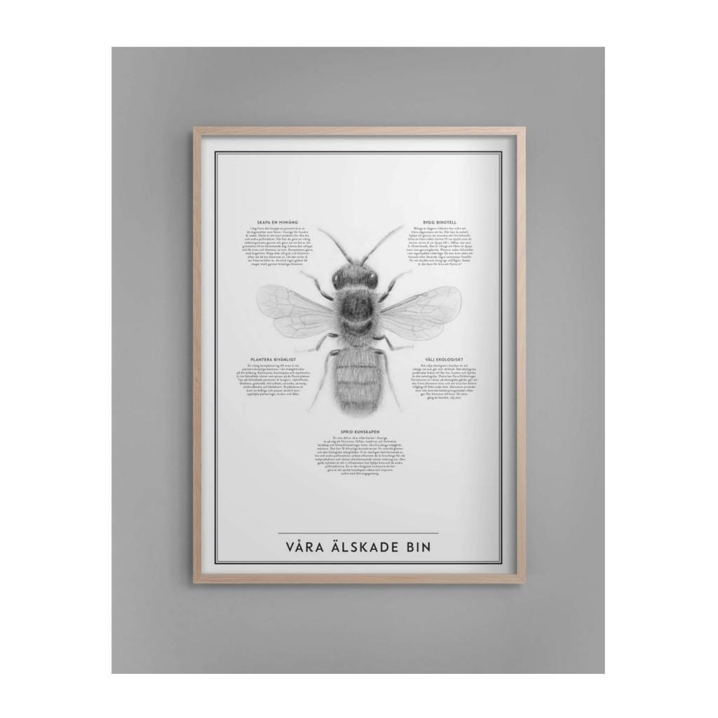 våra älskade bin kunskapstavlan poster