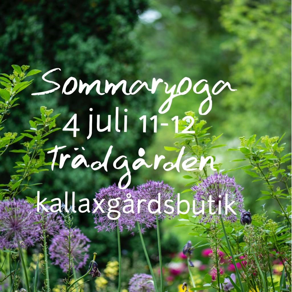 sommaryoga kallaxgårdsbutik trädgård
