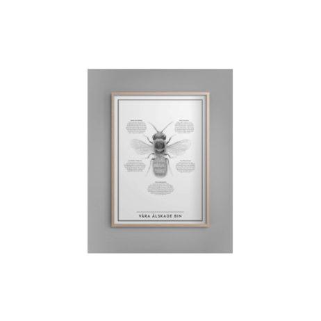 våra älskade bin tavla kunskapstavlan
